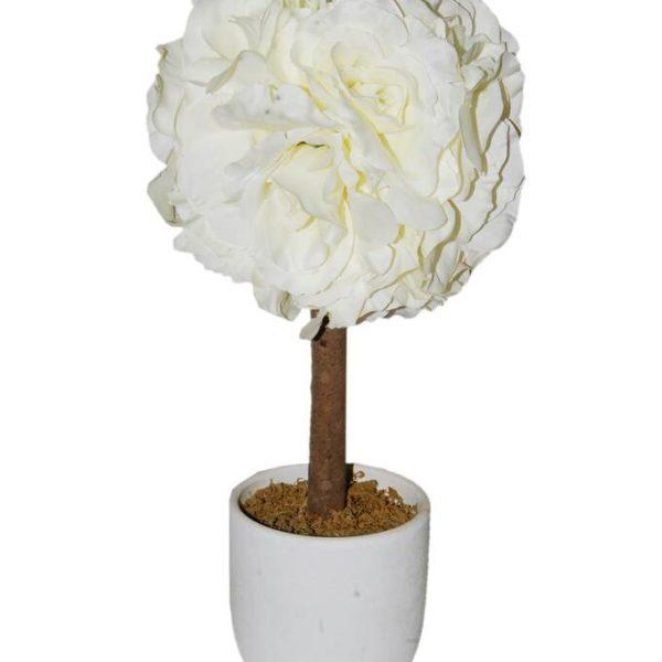 Cream Rose Tree